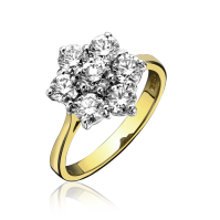 R 18ct Yellow and White Gold 6x1 Diamond Cluster