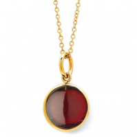 18ct Yellow Gold Garnet Spectical Set Pendant